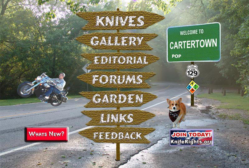 Cartertown Home Page Image
